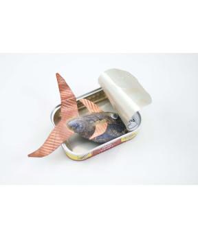 Une sardine dans sa boite...